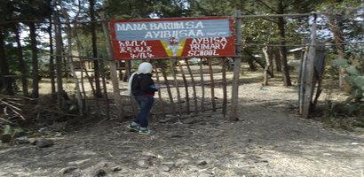 ayibiisaa
