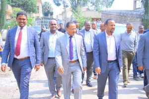 Ethiopia: Is OPDO the new opposition party? An Appraisal - OPride com