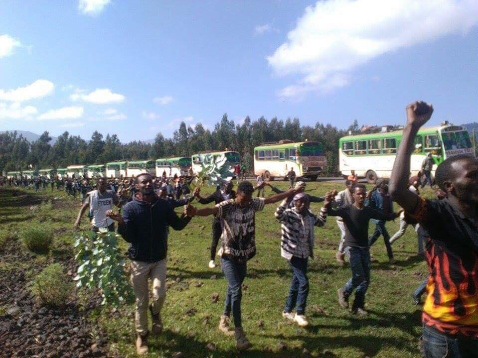 A heroic send-off for Aliyi Cirri, a pioneer Oromo freedom fighter